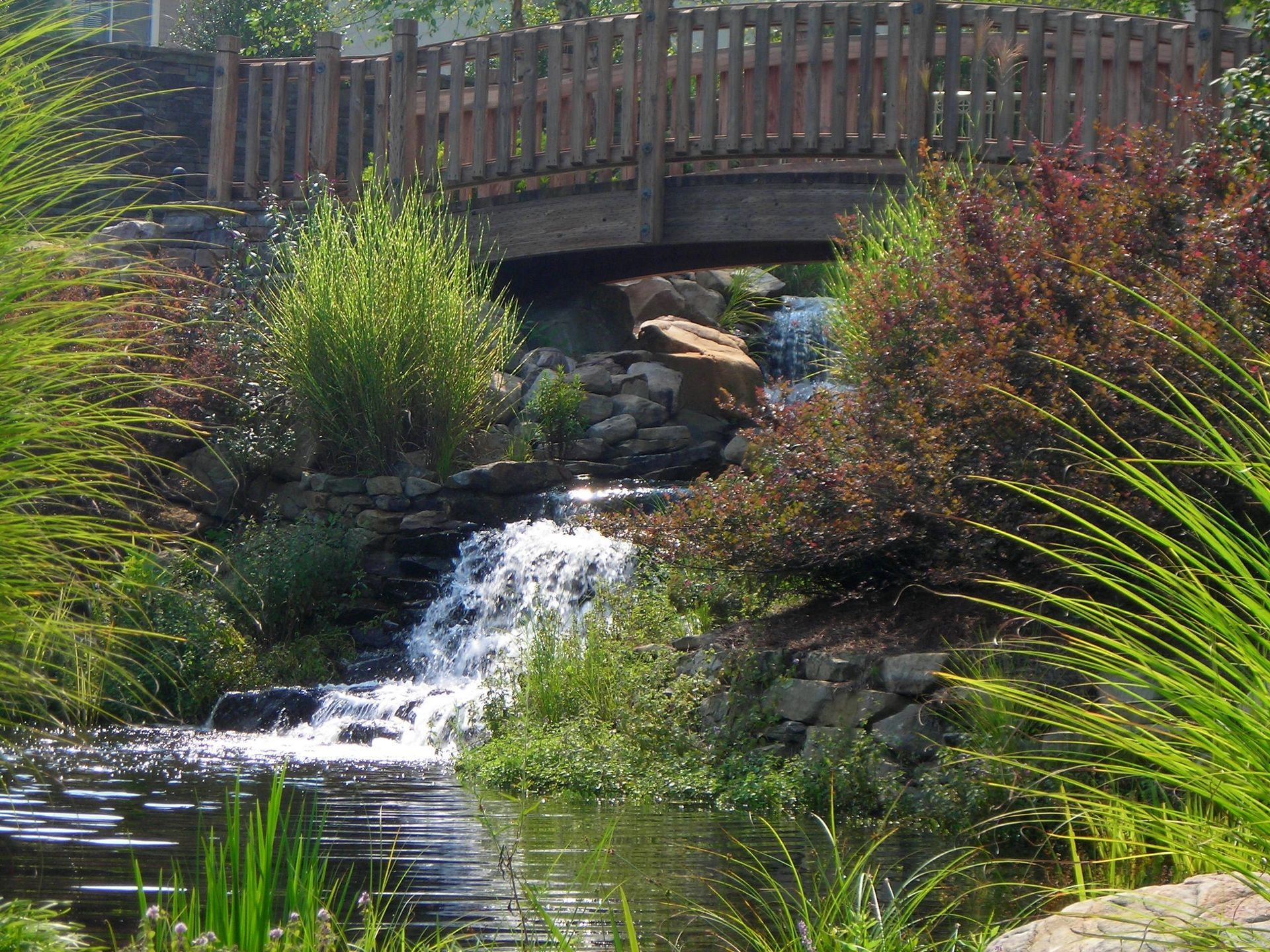 Lanier Village Estates, Gainesville, GA | Continuing Care Retirement Community Senior Living Design THW Walking Bridge waterfall
